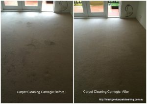 Carpet steam cleaning Carnegie