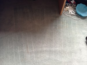 How to remove red wine on carpet
