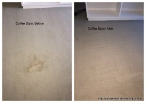 coffee stain on the carpet removal