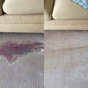 Carpet Cleaning Melbourne Red Wine Stain Removal