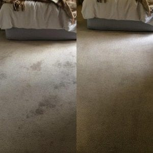 Carpet Cleaning Melbourne Stain Removal