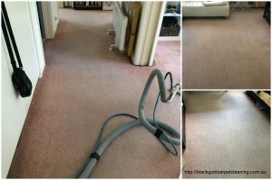 Carpet Cleaning Review Melbourne after