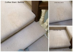 Carpet cleaning Oakleigh stains