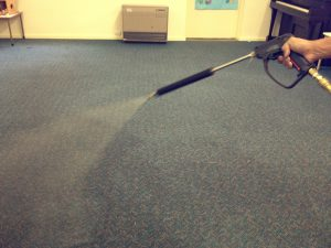 professional carpet cleaning pre spray