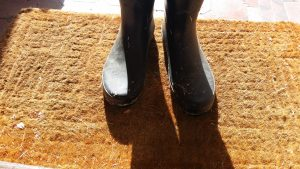 dry soil removal for carpet cleaning Maintenance