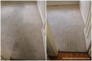 Guarantee for carpet cleaning