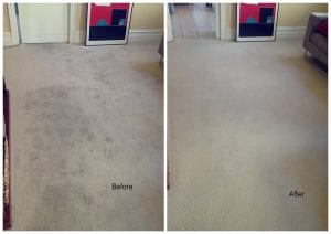 Carpet steam cleaning Melbourne for heavily solied carpet