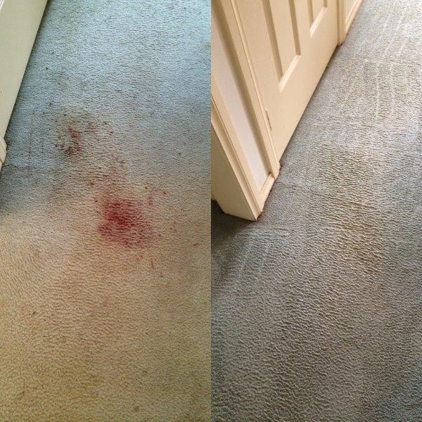 Blood Stain Removal Melbourne