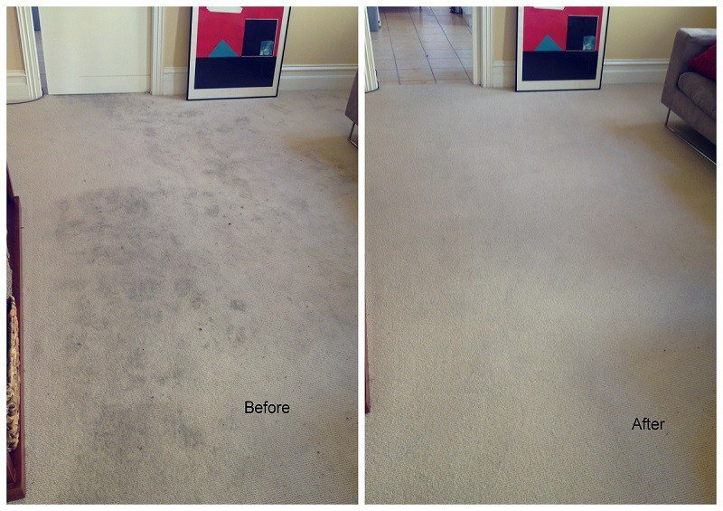 Non Toxic Carpet steam cleaning Melbourne for heavily solied carpet