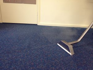 professional carpet cleaning steam cleaning
