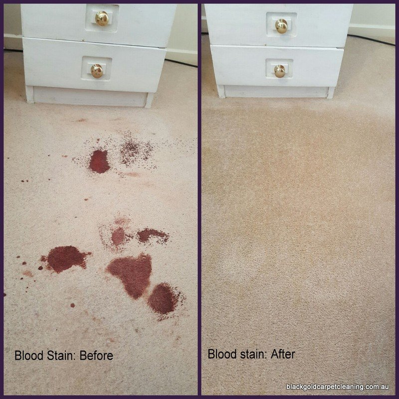 Blood stain on carpet