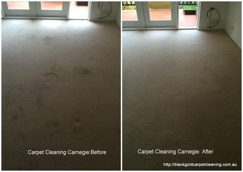 Steam Carpet cleaning Carnegie