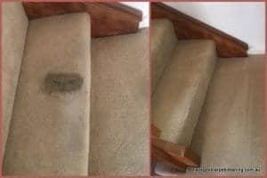Carpet Cleaning Hughesdale
